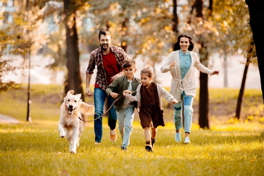 Dog runnig with kids